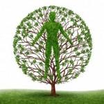 תודעה, התודעה, פרספקטיבה